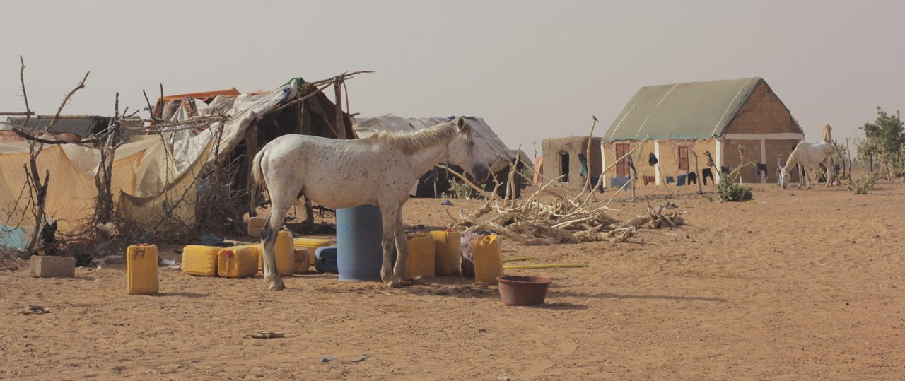 Messera Jedida  Mauritania pablocaminante caballo 1280x539 - Mauritania 5/5, Gogui