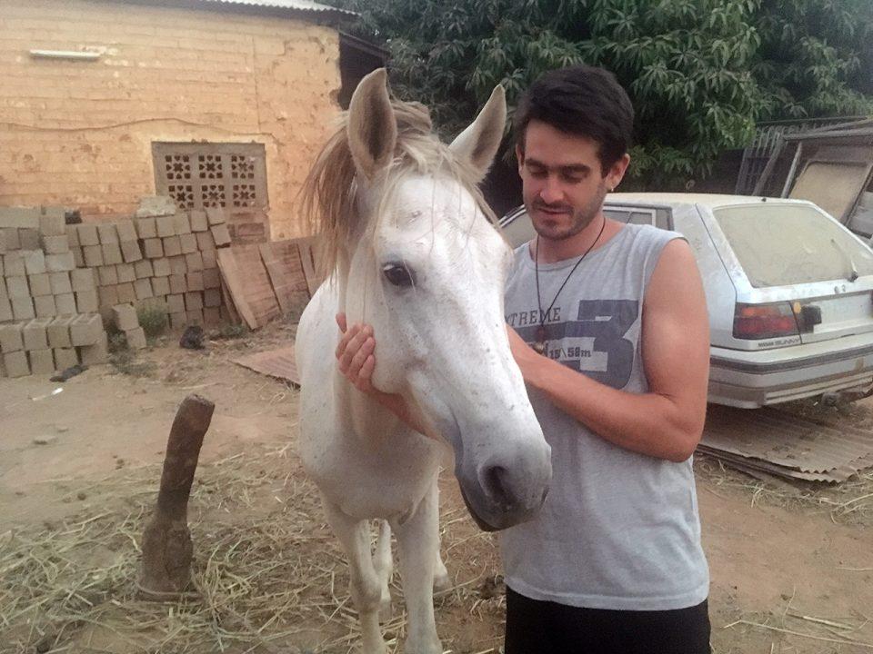 caballo pablocaminante 960x720 - Mali 2, de Nioro a Ségou
