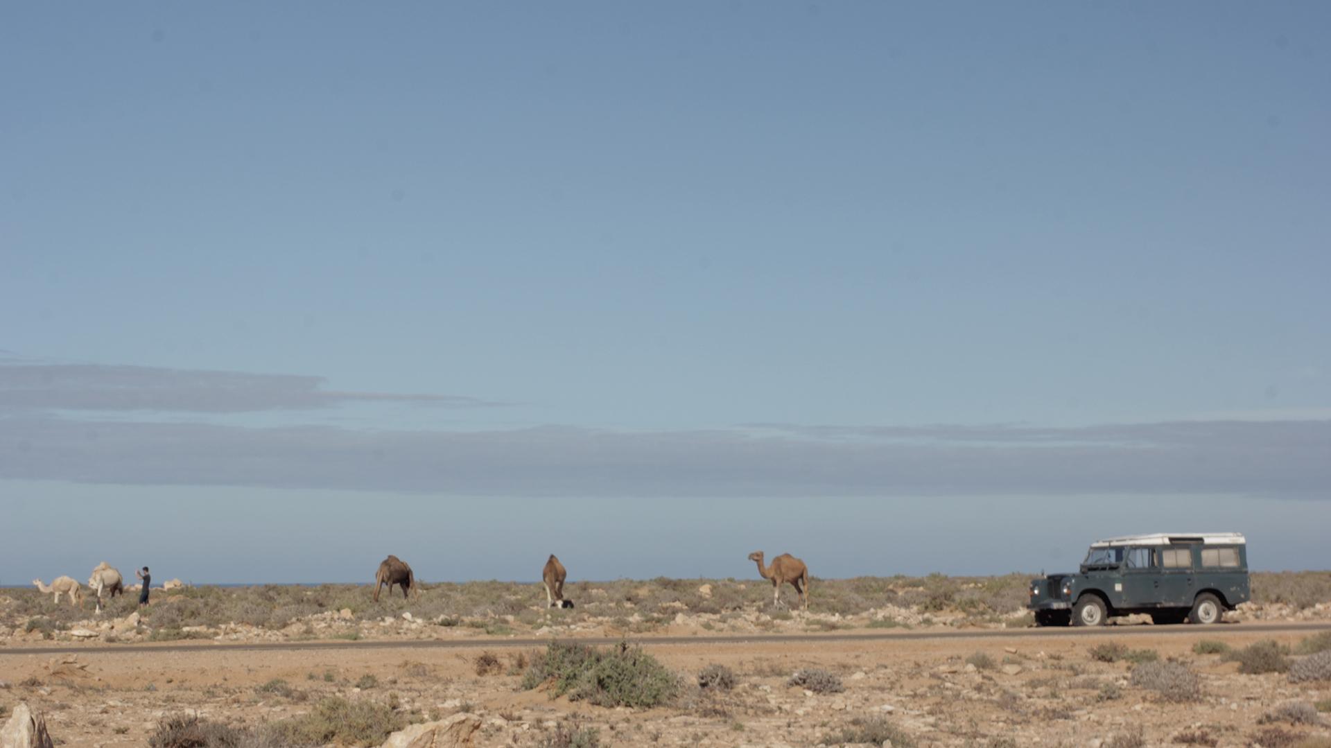 paisaje land rover marruecos pablocaminante - Marruecos 2/3, Sahara Occidental