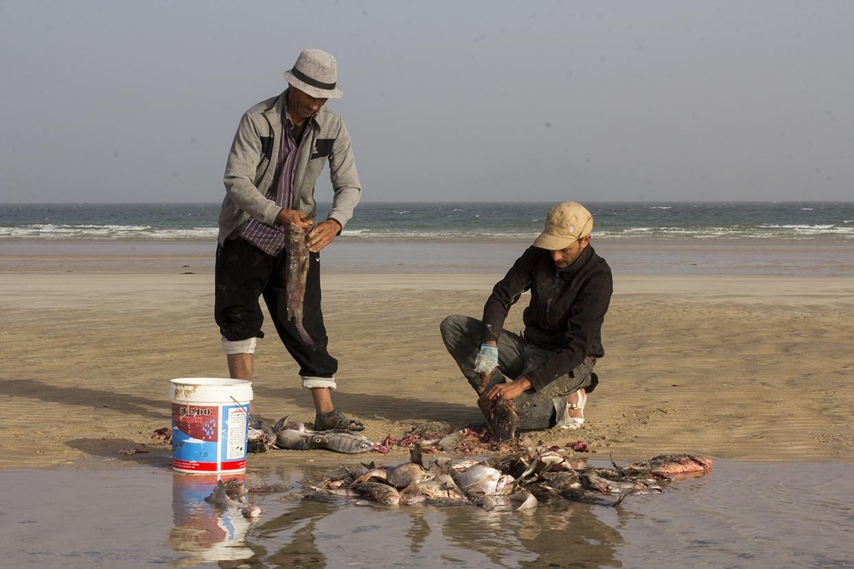 pescando mauritania pablocaminante - Mauritania 2/5, de Nouadhibou a Nouakchott
