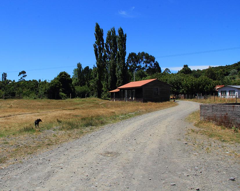 camino lin lin pablocaminante - Chiloé, Chile