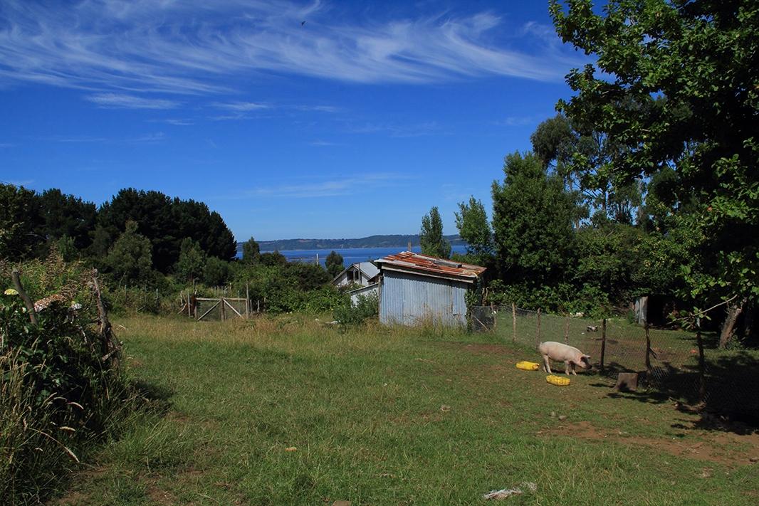 casa isolina vista pablocaminante - Chile, Islas de Chiloé