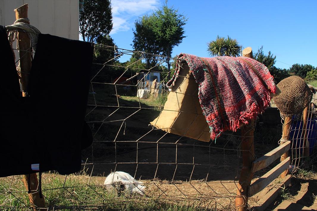 cerco isolina chiloe pablocaminante - Chiloé, Chile