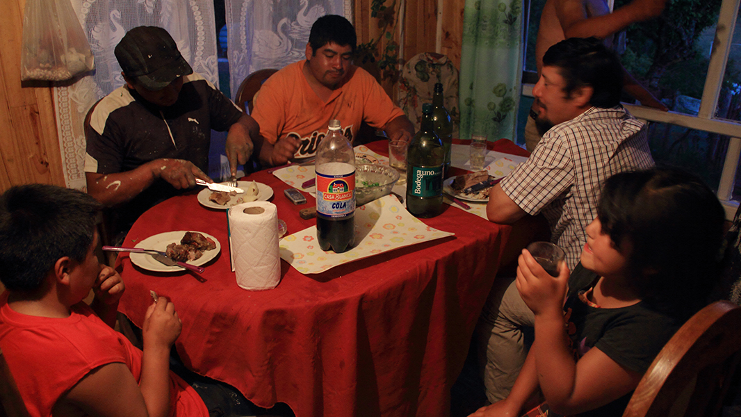 cumpleanos cordero chiloe pablocaminante - Chiloé, Chile
