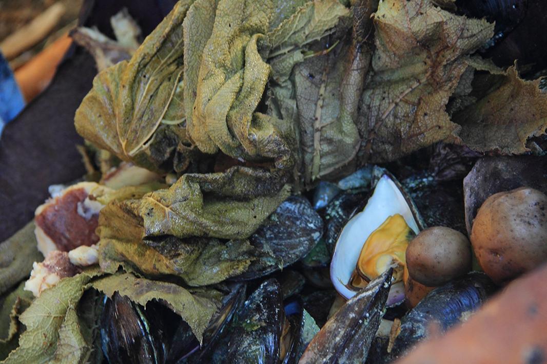 curanto detalle chiloe pablocaminante - Chile, Islas de Chiloé