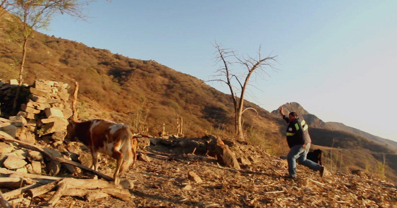 habitante higuera pablocaminante 1280x671 - Bolivia, Ruta del Che