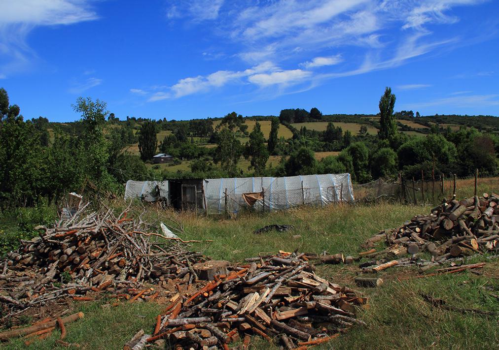 invernadero madera chiloe pablocaminante - Chile, Islas de Chiloé