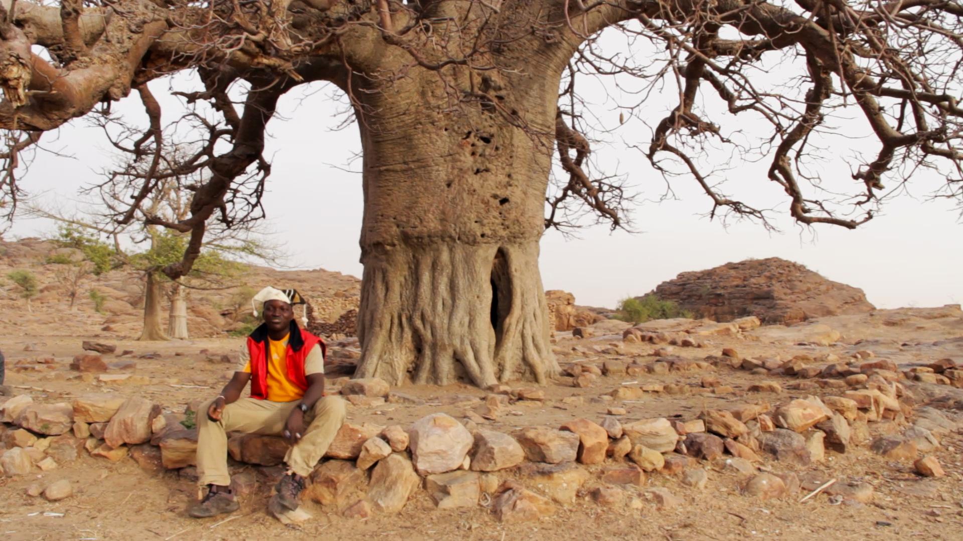 djibril kassogue baobab pablocaminante - Malí 6, País Dogon III: Falla de Bandiagara